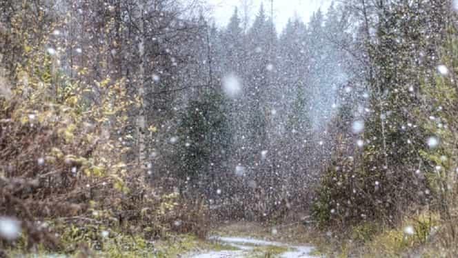 Prognoza meteo 16 februarie. Va ninge răzleţ