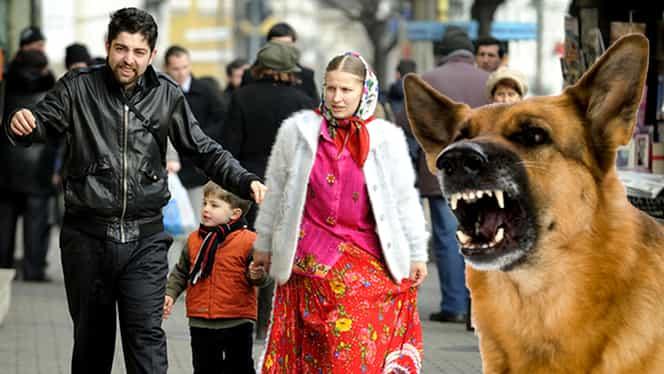 De ce latră câinii după ţigani! NU E BANC! Adevărul te va uimi