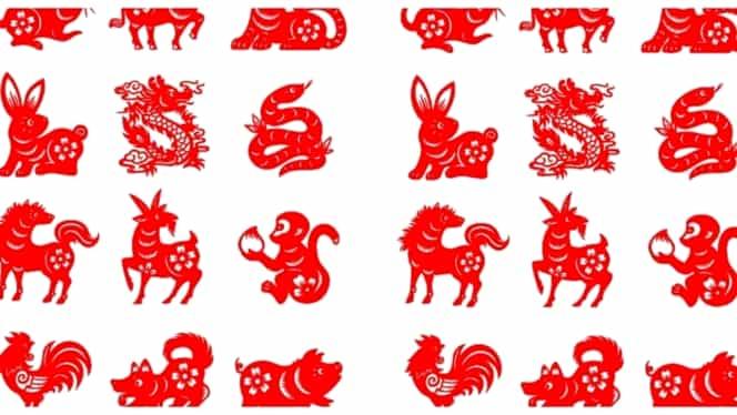 Zodiac chinezesc de weekend 5-6 octombrie 2019. Dragonii își pierd răbdarea