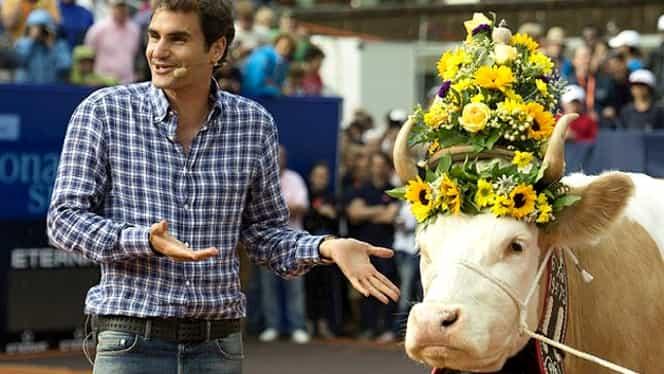O vacă pentru Federer, şi nu e Mirka…Vavrinec