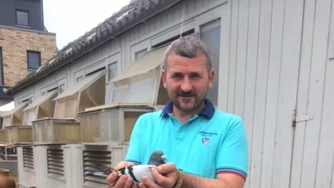 Un român a vândut cel mai scump porumbel din LUME! Vezi câţi bani a incasat! FOTO