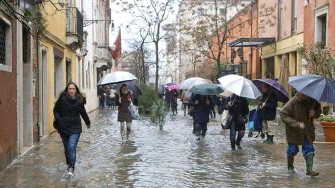 Vânt puternic şi ploi! Şapte copaci smulşi! Un taximetrist a fost rănit în Capitală!