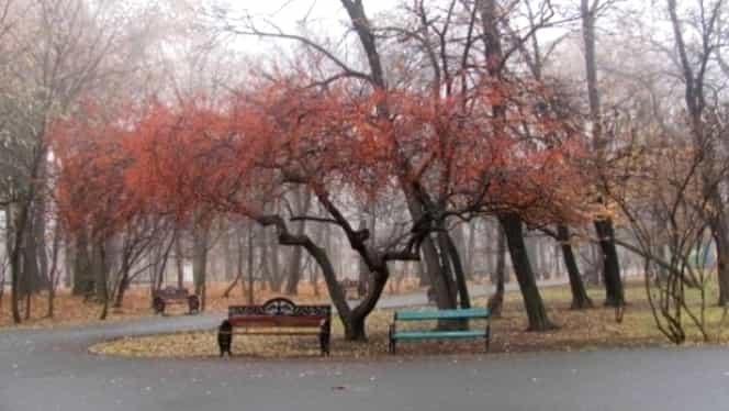Prognoza meteo 21 ianuarie. Cum va fi vremea în București, Brașov, Cluj-Napoca și Iași. Unde va fi cel mai cald