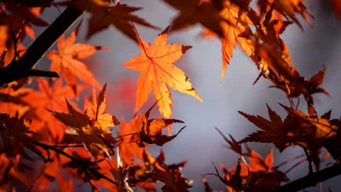 Vremea pentru marți, 9 octombrie: vin temperaturi de 26 de grade