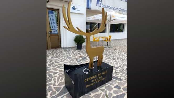 Cerbul de Aur 2019: Cum poți câștiga invitații la cel mai mare festival internațional de muzică din România. S-a dat startul concursului!