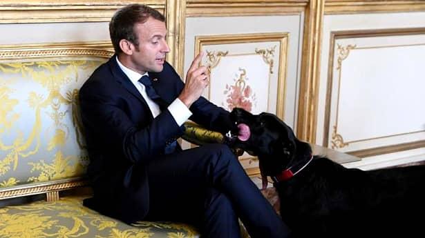 Președintele Franței anunță noi măsuri dure împotriva coronavirus