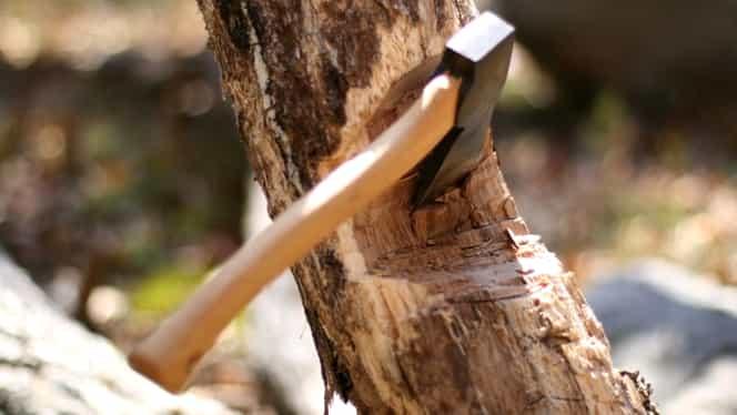 Încă un pădurar a fost agresat de hoţii de lemne! În urmă cu o zi, altul a fost ucis