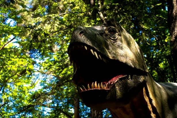 Ghid de vacanță: de ce este Dino Parc principala atracție din România în vara lui 2019
