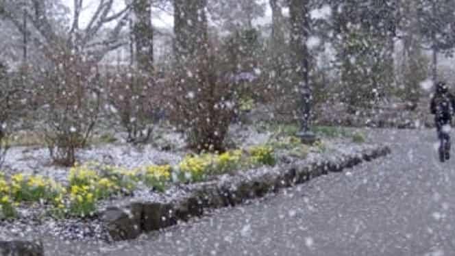 Prognoza meteo 23 decembrie. Va fulgui în aproape toată ţara!