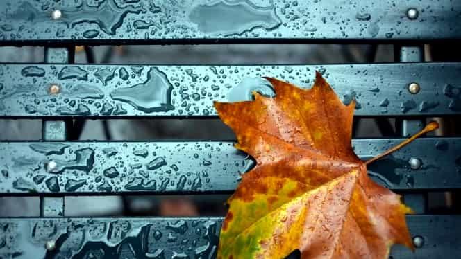 Prognoza meteo vineri, 29 noiembrie. Vremea în București, Iași, Brașov, Cluj Napoca, și Constanța