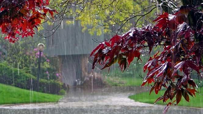 Prognoza meteo 2 decembrie. Vremea se menţine mohorâtă şi va ploua