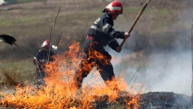 Incendiu de vegetație puternic! Forțele aeriene române intervin de urgență