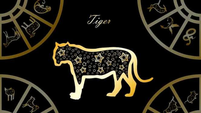 Zodiac chinezesc pentru marți, 12 mai 2020. Tigrul învață să se bucure de micile plăceri ale vieții