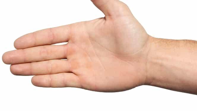 Te mănâncă palma? Vezi care palmă aduce avuţie şi care aduce pagubă, dar şi ce trebuie să faci!