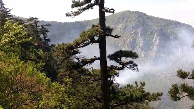 Incendiu în Parcul Naţional Domogled! Elicopterele MAI sunt ținute la sol!