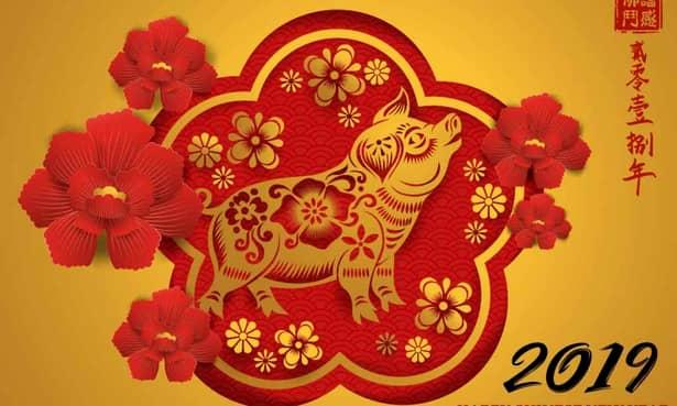 Ne apropiem de intrarea în anul Mistreţului de Pământ, confrom zodiacului chinezesc