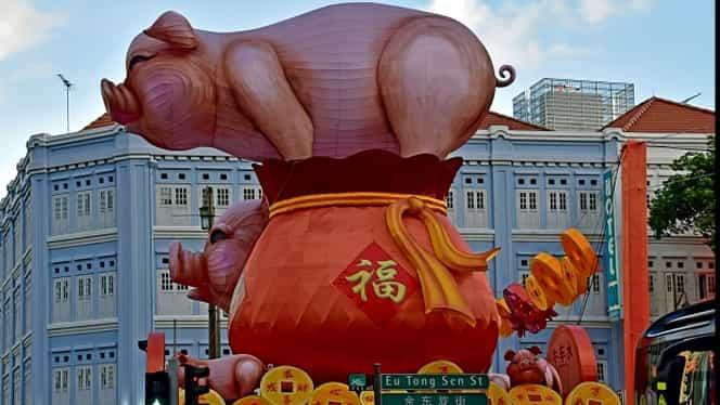 Zodiac chinezesc pentru luni, 30 martie 2020. Mistrețul nu vrea să învețe din greșeli