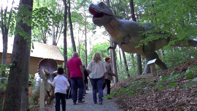 10 lucruri pe care poți să le faci, împreună cu copiii, la Dino Parc din Râșnov