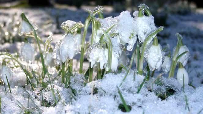 Prognoza meteo vineri, 1 februarie! Vremea în București, Iași, Constanța, Cluj sau Brașov: vin temperaturi ridicate