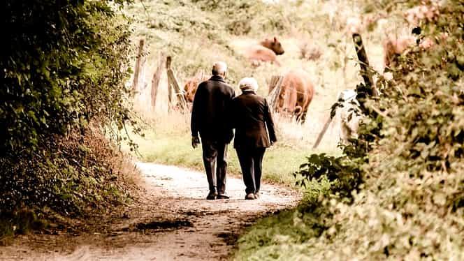 Care e stagiul minim de cotizare pentru a ieși la pensie! Cât valorează punctul de pensie