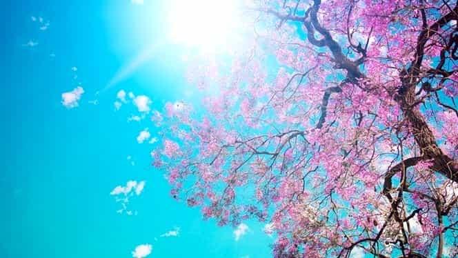Prognoza meteo 10 aprilie. Vremea va fi frumoasă, cu temperaturi de până la 26 de grade Celsius