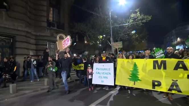 Marşul pentru păduri. Sute de oameni au ieşit pe stradă în Bucureşti pentru a protesta contra violenţelor asupra pădurarilor VIDEO