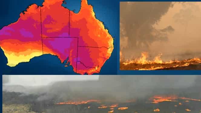 Iadul din Australia atinge un nou bilanț. Incendiile de vegetație au dus la moartea a 12 oameni – Video