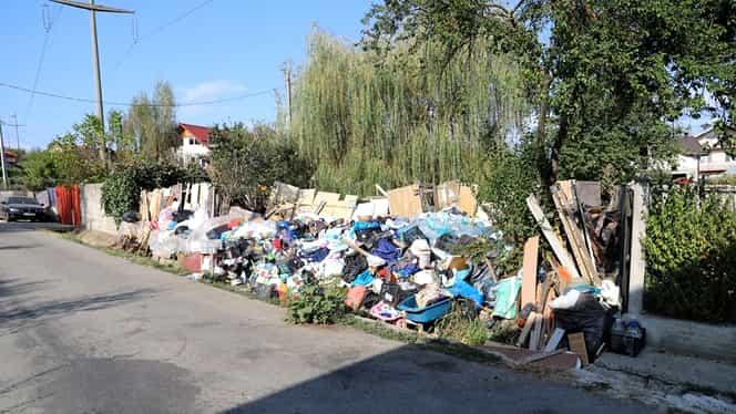 Cresc amenzile pentru aruncatul gunoaielor pe drumurile publice. Suma este imensă