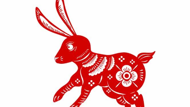 Zodiac chinezesc 2020 Iepure. Previziuni complete pentru această zodie: Dezastru în dragoste