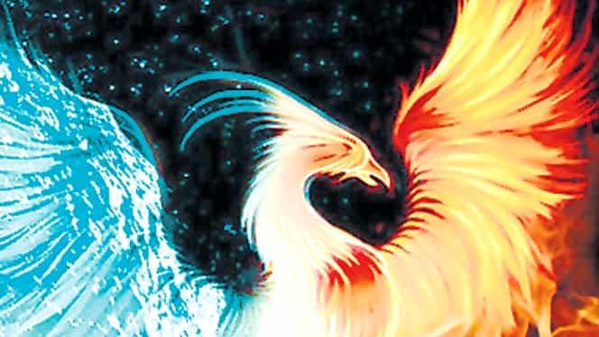 Paranormal. Pasărea Phoenix, simbolul reînvierii