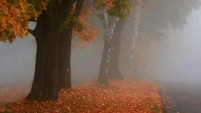Prognoza meteo 10 noiembrie. Vremea va fi mohorâtă şi se vor semnala ploi slabe