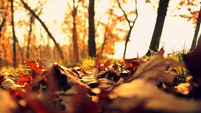 Prognoza meteo duminică, 14 octombrie: temperaturi scăzute dimineața