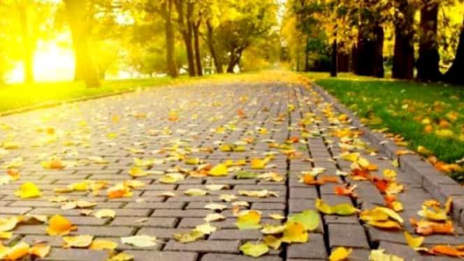 Prognoza meteo luni, 8 octombrie: temperaturile se mențin calde