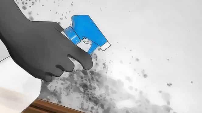 Bicarbonatul de sodiu te scapă definitiv de mucegaiul din casă! Iată cum trebuie să îl foloseşti