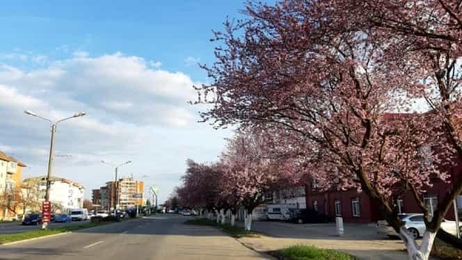 Prognoza meteo pentru luna aprilie! Vom avea parte de vreme frumoasă pe întreg teritoriul țării