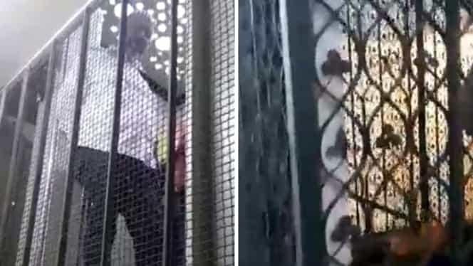 Video. Aurelian Bădulescu, viceprimarul Capitalei, a căzut cu liftul la Prefectura București