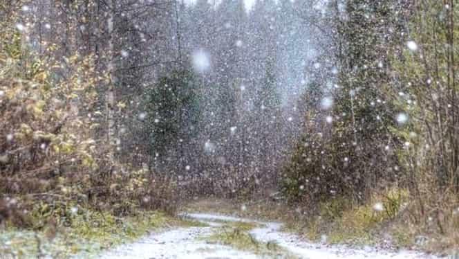 Prognoza meteo 9 februarie 2018. Vin ninsorile, dar şi ploile!