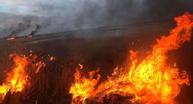 Temperaturi ridicate incendii