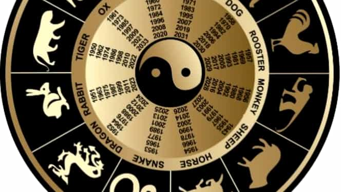Zodiac chinezesc pentru miercuri, 15 aprilie 2020. Iepurele este stresat și dă greș în tot ce face