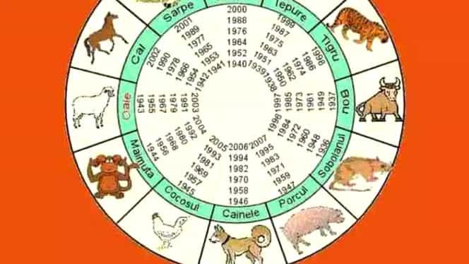 Zodiac chinezesc pentru ziua de joi, 27 februarie. Cocoşul vrea să avanseze în societate
