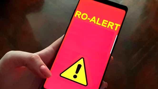 Avertizare RO-Alert: Urs semnalat în județul Harghita