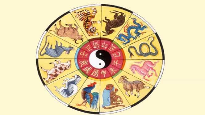 Zodiac chinezesc de weekend 9-10 noiembrie 2019. Dragonii fac niște compromisuri periculoase