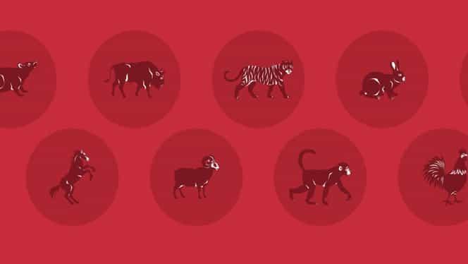 Zodiac chinezesc pentru joi, 16 ianuarie 2020. Bivolii, Mistreții și Dragonii au parte de multe răsturnări de situație favorabile
