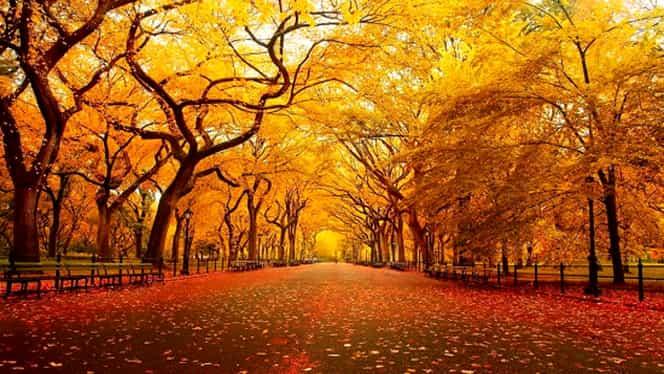 Prognoza meteo 26 octombrie. Vremea se va încălzi uşor