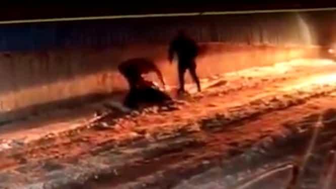Un tânăr de 25 de ani, ucis de un criminal eliberat cu recursul compensatoriu! VIDEO