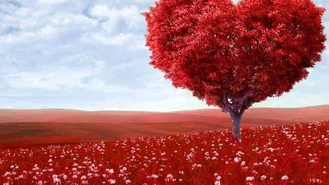 4 mai, Ziua Naţională a Inimii! 4,35 milioane de decese anual!