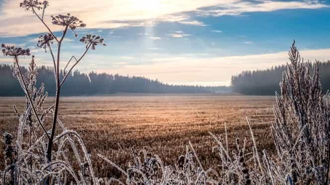 Prognoza meteo: miercuri, 4 decembrie. Cum va fi vremea în București, Brașov, Cluj-Napoca, Constanța și Iași. Anunț de ultima oră de la meteorologi