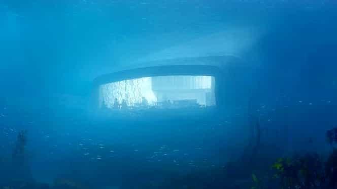 Cum arată primul restaurant aflat la cinci metri în mare! Unde puteţi mânca printre peşti!