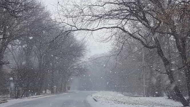 Prognoza meteo vineri, 11 ianuarie! Vremea în București, Iași, Brașov, Constanța sau Cluj: zile pline de zăpadă