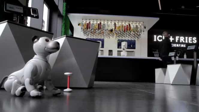 Soluția ideală pe timp de pandemie! Un bar complet robotizat a fost deschis recent în Islanda